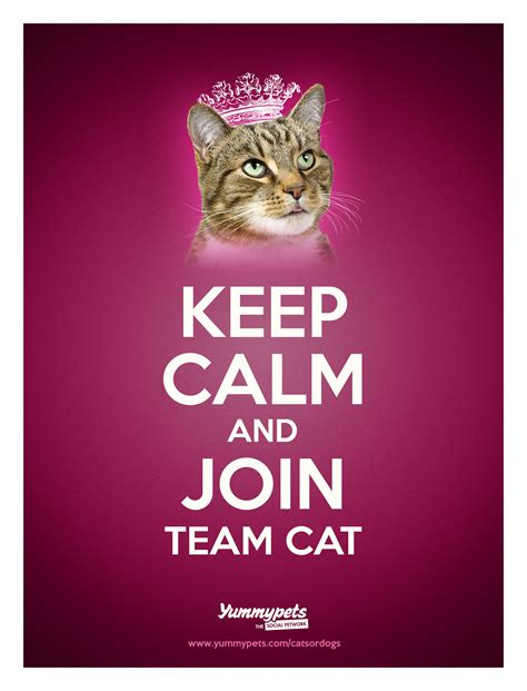 Cat Keeps On by Great Britain Time To Decide Are We A Nation Of Cat