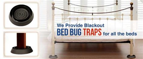 bed bug exterminator near me bed bug exterminators near me 28 images bed bug pest control in