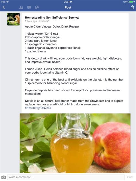 Apple Cider Vinegar Detox by Apple Cider Vinegar Detox Health And Workout