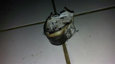 isolasi pas 1818 tahan panas solatip pipa ledeng terbukti tahan panas cocok untuk