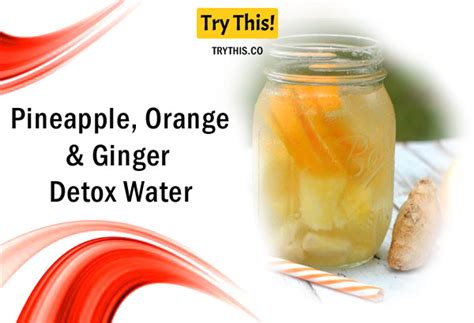 Apple And Orange Water Detox by Detox Water Top 50 Fruit Infused Water Recipes Health