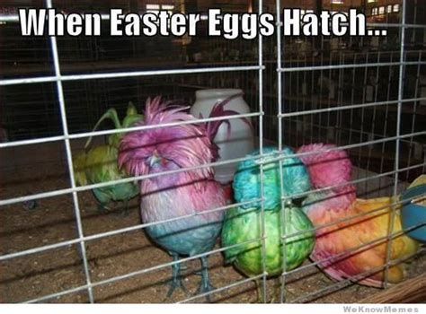 Dirty Easter Memes - 12 funniest easter memes weknowmemes