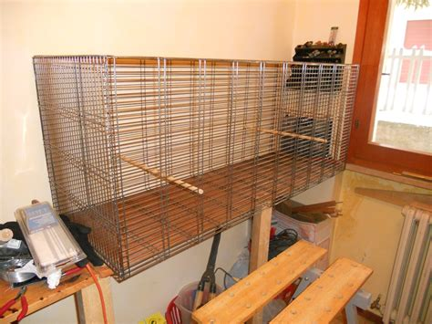 gabbia uccelli fai da te gabbia per scoiattoli fai da te 28 images la gabbia