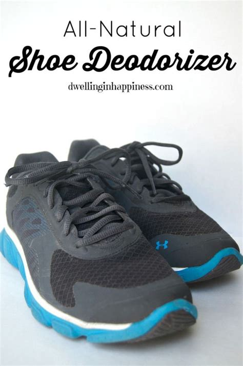 shoe deodorizer diy diy shoe odor eliminator 28 images diy shoe odor