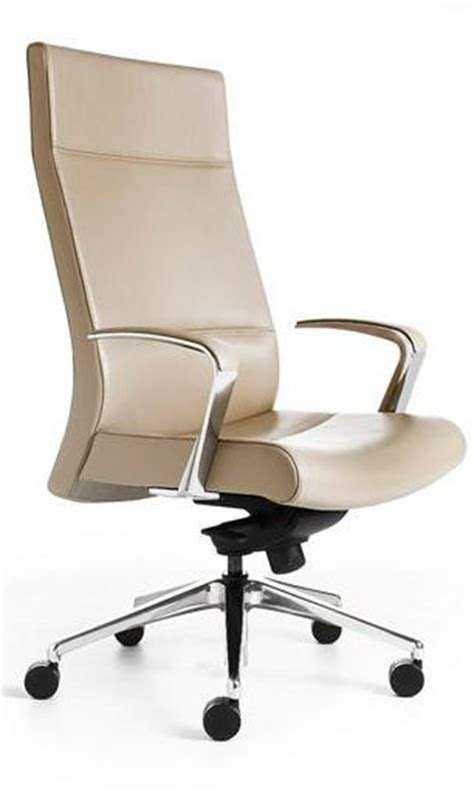 chair features back option and headrest extension