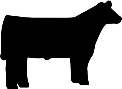 Show Heifer Outline by Show Cow Outline