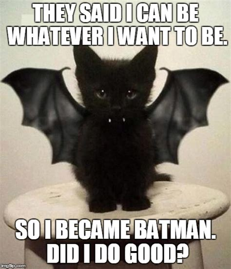 Bat Meme - 12 hilarious bat memes