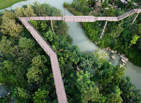 Bench Press Row Landscape Architects Of Bangkok Landscape Architecture