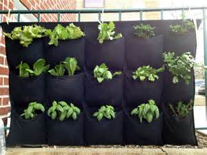 hanging herb garden build a hydroponic hanging herb garden lifehacker uk
