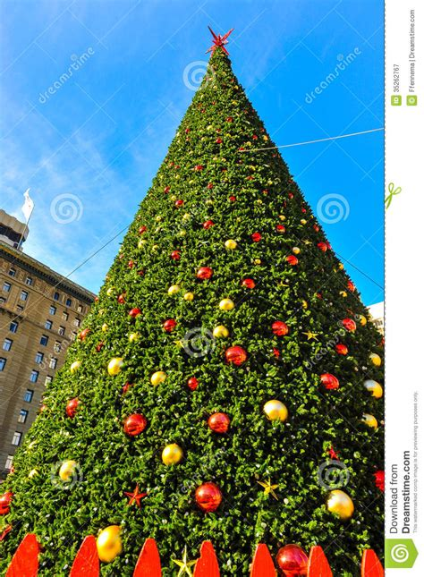 pound landscape christmas trees tree with cables and fence stock image image 35262767