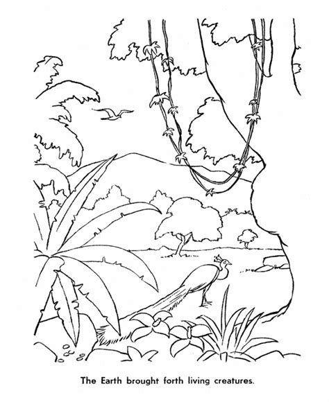 creation coloring pages az coloring pages
