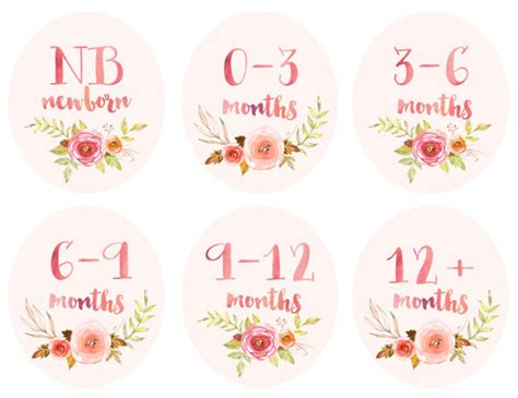Closet Tags For Baby Clothes by Baby Infant Clothing Printable Tags Labels Dividers For