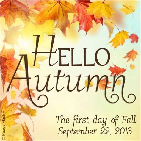 autumn is here cool stuff pinterest