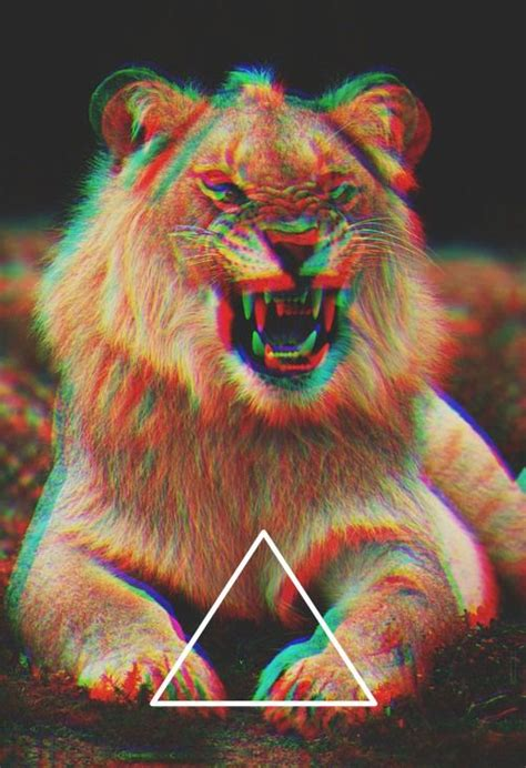 wallpaper tumblr lion lion triangle power pinterest hipsters hipster