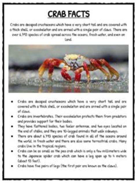 crab facts  worksheets  kids