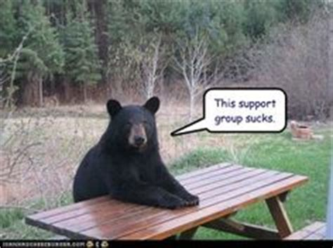 Bear At Picnic Table Meme - mental health we re all crazy here on pinterest mental breakdown some people and pills
