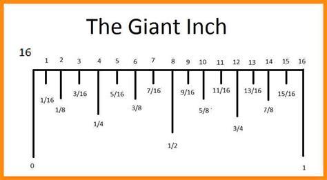 ruler diagram 5 8 inch on ruler choice image diagram writing sle