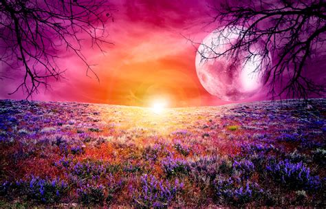 most beautiful colors colorful full moon 4k ultra hd wallpaper 4k wallpaper net