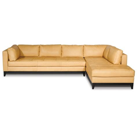 elite leather sofa elite leather sofas accent