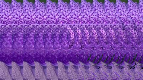 mostrar imagenes ocultas en word stereograms diy 3d dottpix