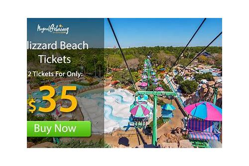 coupons for disney blizzard beach