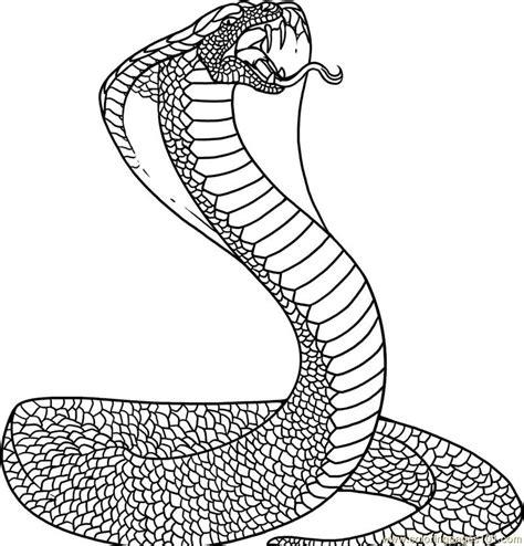snake mandala coloring pages snake coloring page free snake coloring pages