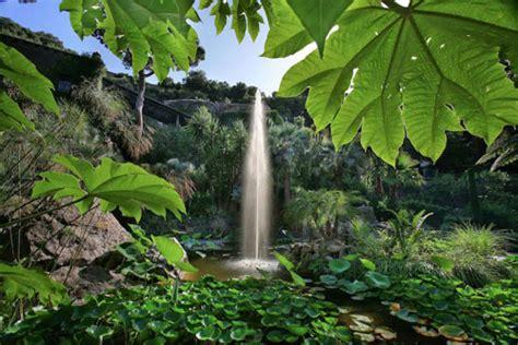 giardini della mortella giardini della mortella il mediterraneo si sposa con i
