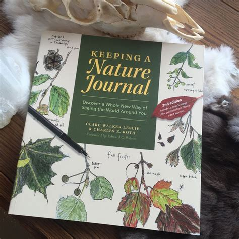 keeping a nature journal de 25 b 228 sta id 233 erna om nature journal bara p 229 skissblock skissblocksid 233 er och