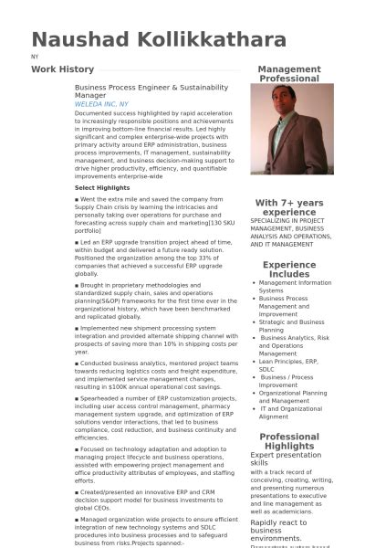 Business Process Engineer by Business Process Manager Resume Resume Ideas