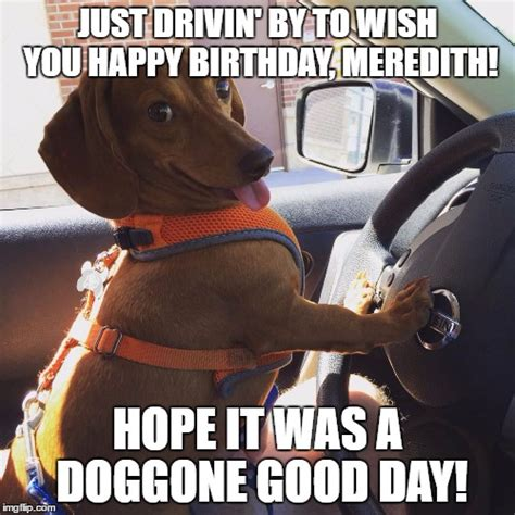 Wiener Dog Meme - wiener dog meme 28 images weiner dog funny quotes