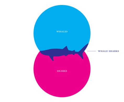 best venn diagram 15 cool infographics that work and don t require any