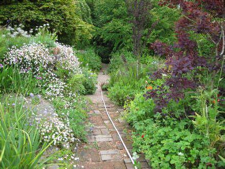 carol klein in a cottage garden 66 best images about carol kleins cottage garden on
