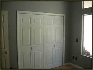 Your home improvements refference 6 panel double closet doors