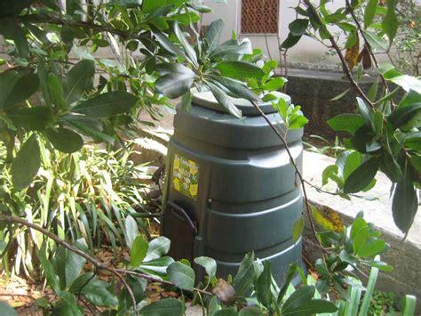 compostiera da terrazzo comune di cerveteri compostiere gratis per chi ha un orto