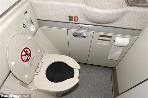 how to use bathroom in flight norwegian air passengers caught having sex in plane s