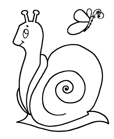 snails coloring pages coloring home