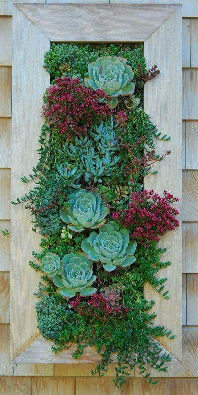 Succulent Wall Garden For Sale 10 Best Images About Jardines Verticales On