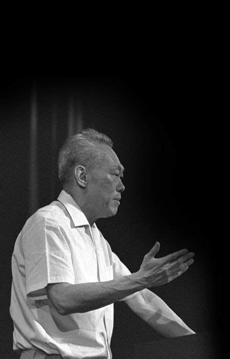 lee kuan yew the critical years 1971 1978 highlights archives online