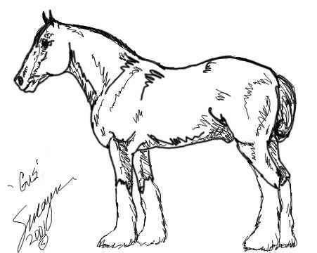 printable coloring pages clydesdale horses 305 best images about color horses donkeys mules and