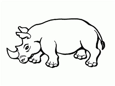 flying squirrel coloring page coloring home