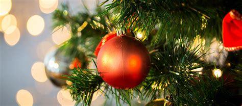 fotos arbol de navidad el 225 rbol de navidad una tradici 243 n 365 im 225 genes bonitas