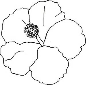 Hibiscus Coloring Pages free printable hibiscus coloring pages for
