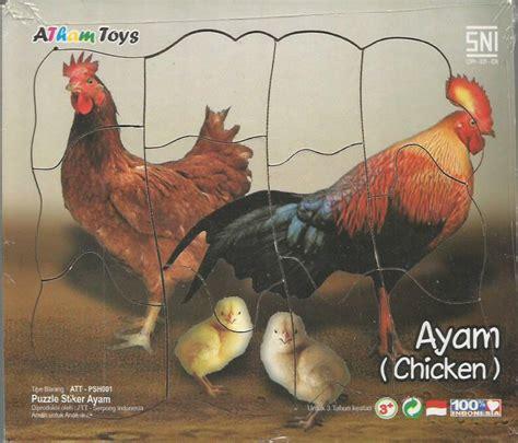Ayam Mainan Ayam puzzle stiker ayam jago 17x20 mainan kayu