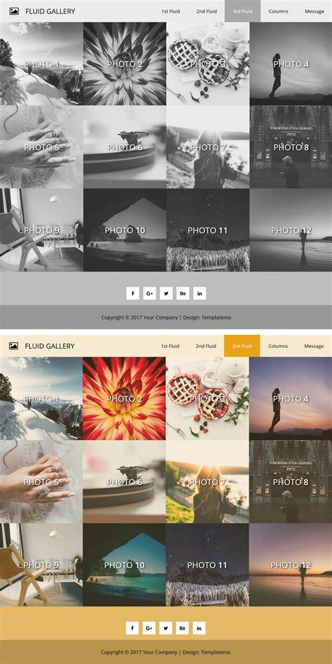 Template 500 Fluid Gallery Fluid Website Templates