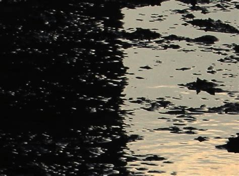 Jasenovac Un Camp De La Mort En Croatie D Egon Berger