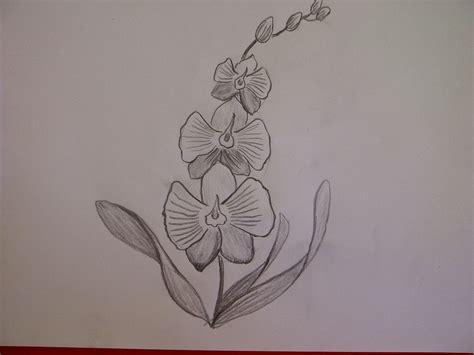 3d tattoo zeichnen download rose zeichnen tattoo danielhuscroft com