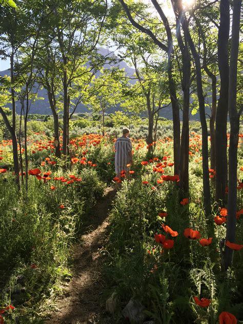 poppy fields  utah  map  video  house  lars built