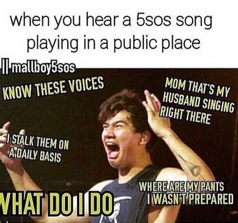 Memes Funny - 5sos funny memes www imgkid com the image kid has it
