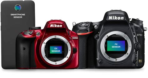 dslr nikon nikon dslr cameras www pixshark images galleries
