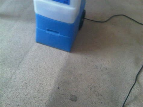 rug doctor mattress cleaning 1000 images about rug doctor on